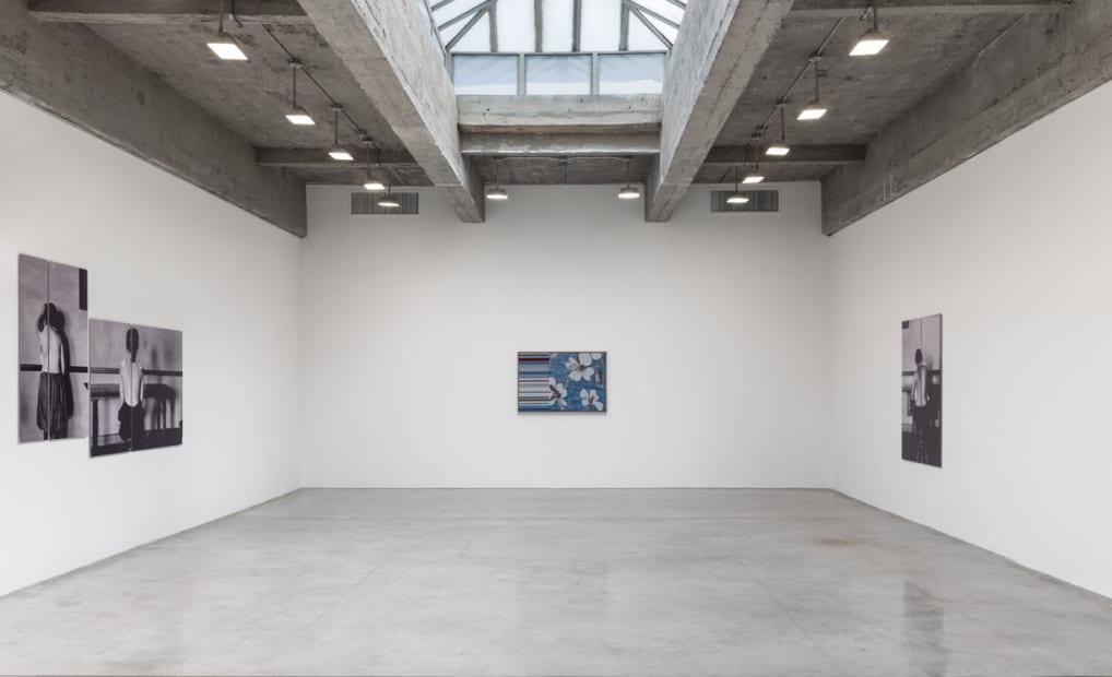 Lisa Oppenheim installation view, flower weaves
