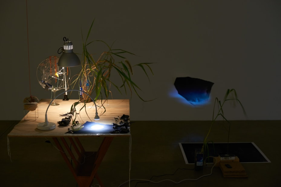 Sarah Sze installation in dark room
