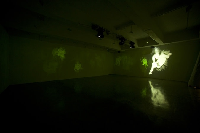 installation view of Collishaw projections