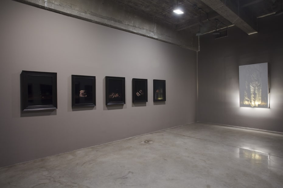 installation view of Collishaw photos