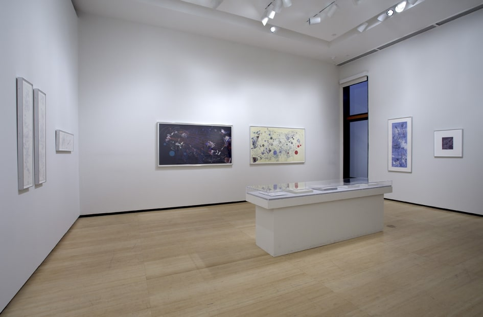 Image of an installation view at Asia Society