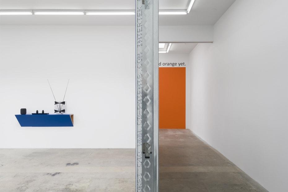 Haim Steinbach installation view 2 rooms