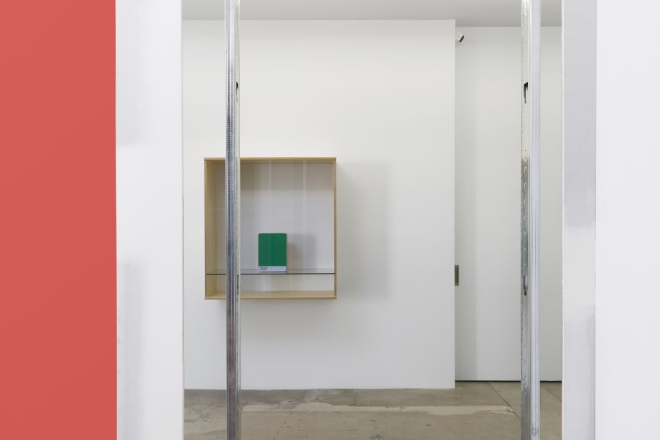 Haim Steinbach installation view pantone box