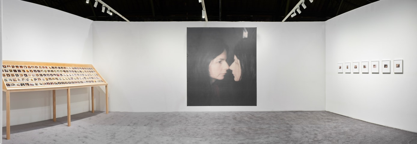 image of Gillian Wearing polaroids and large image of her looking in the mirror