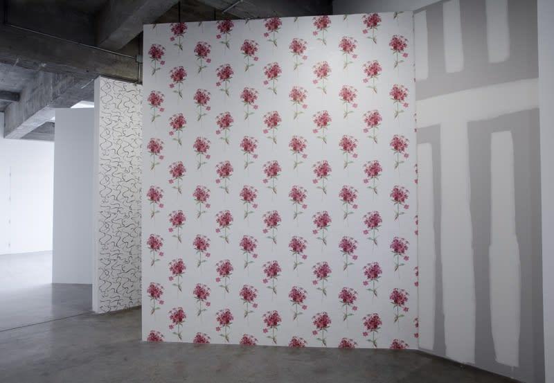 Haim Steinbach installation view of wall construction