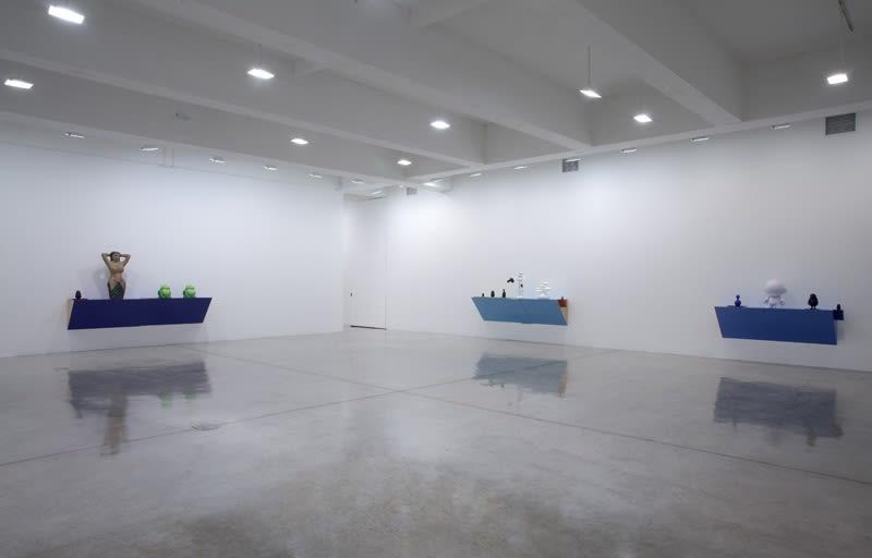 Haim Steinbach installation view of shelves