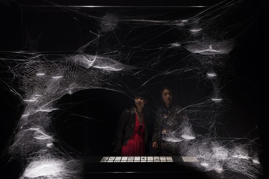 spider tarot cards and spider web installation