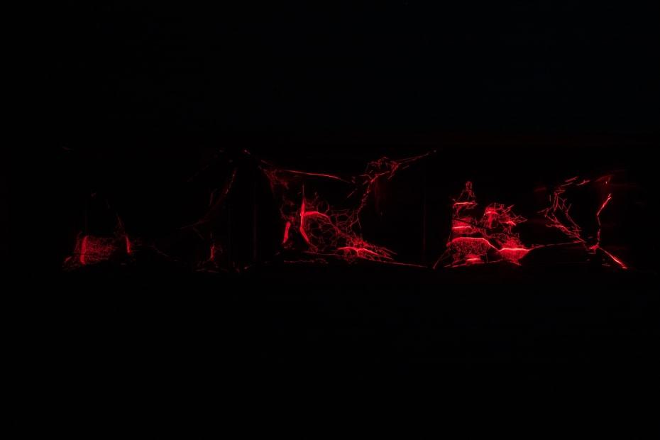 image of red laser spider webs in dark room