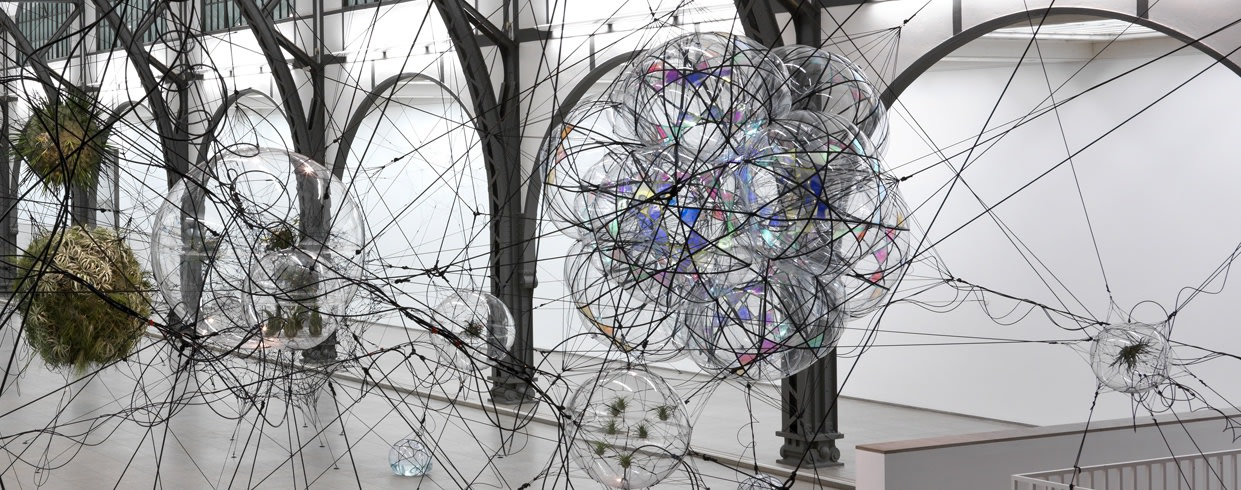 image of biosphere sculptures with plants