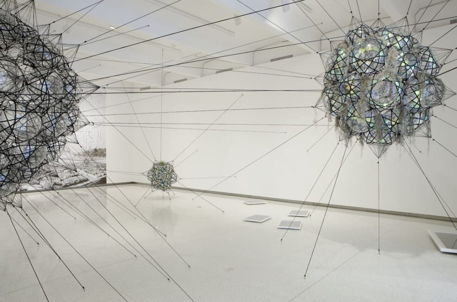 image of Saraceno biosphere and cloud ciites with wallpaper of cloud ciites