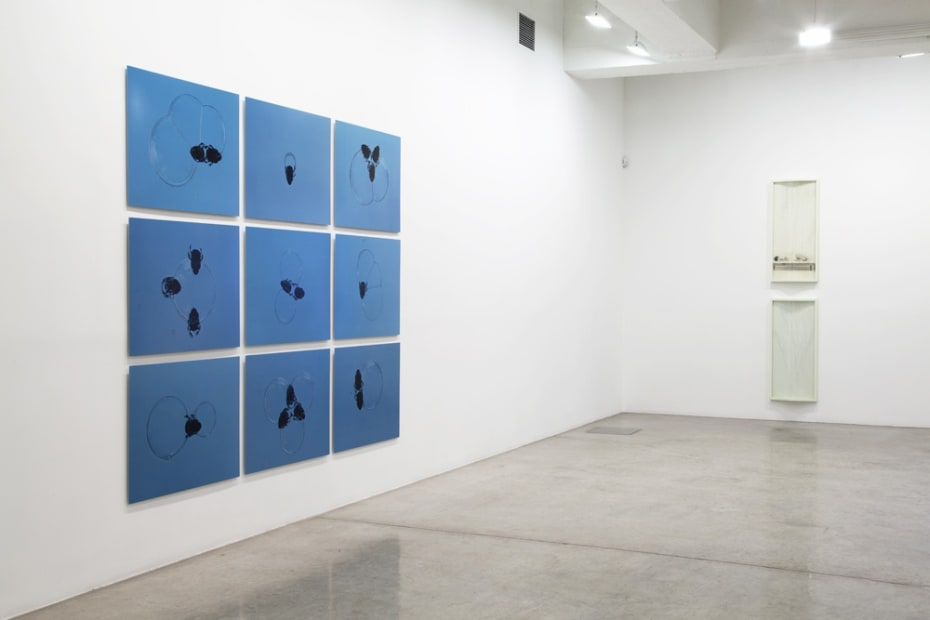 Installation view of The Bigger Picture.