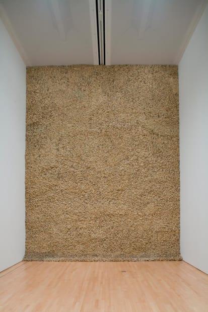 image of moss wall
