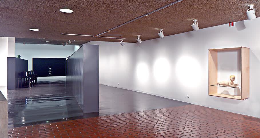 image of Haim Steinbach installation view at Berkeley