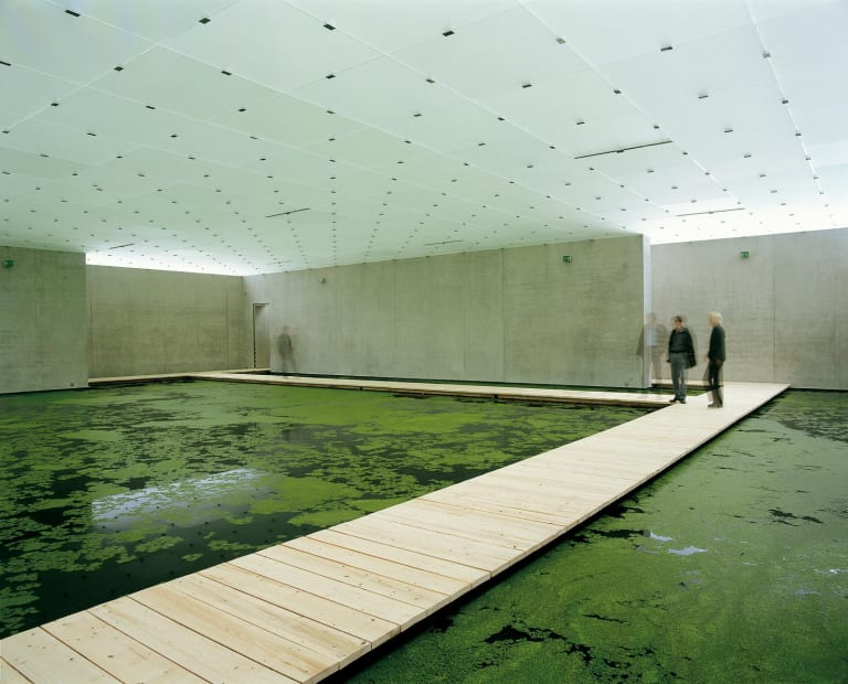 installation image of pond bridge inside museum