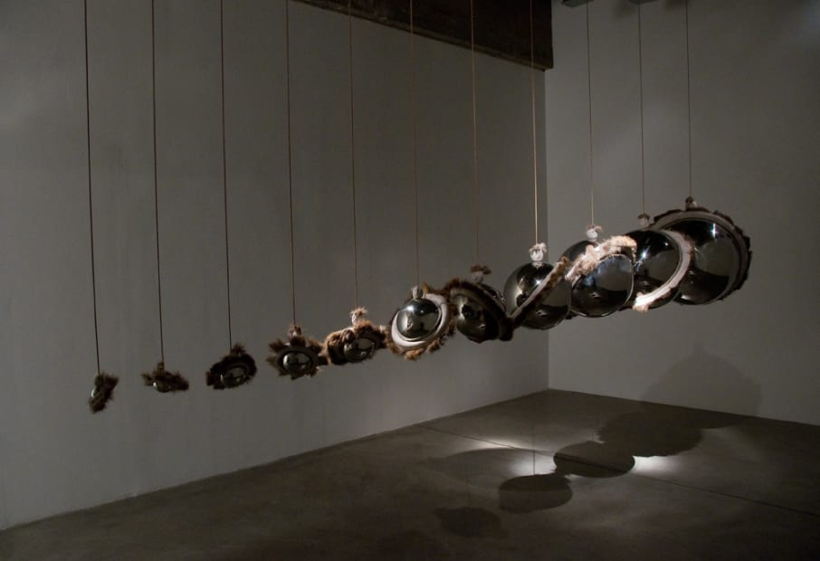 Installation view of Siobhán Hapaska: The Nose that Lost its Dog.