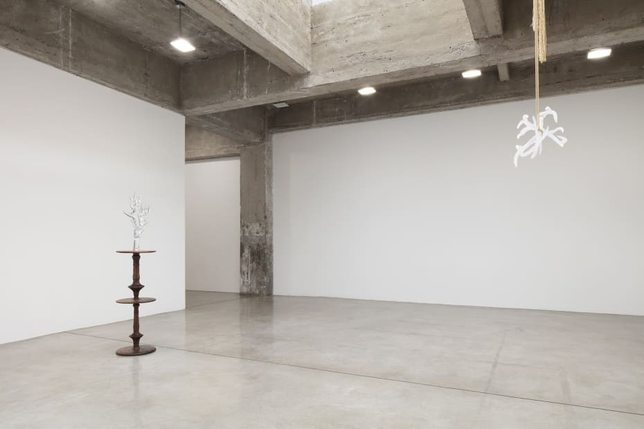 akashi installation view at TBG NY