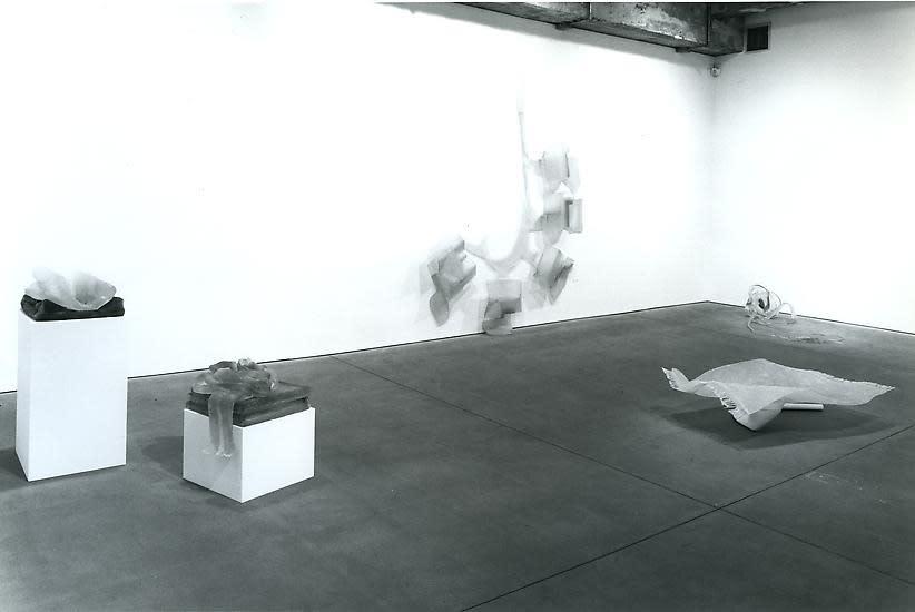 Markus Baenzinger install shot