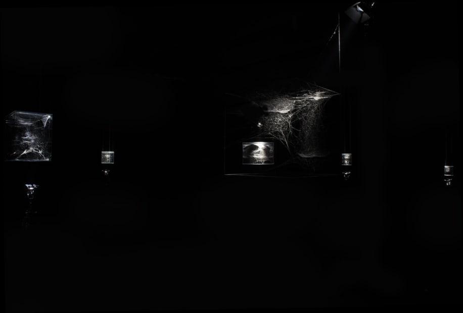 Saraceno spider box installation in dark