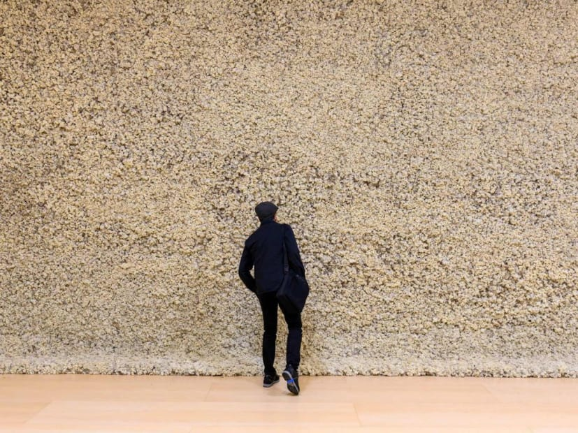 image of eliasson, moss wall