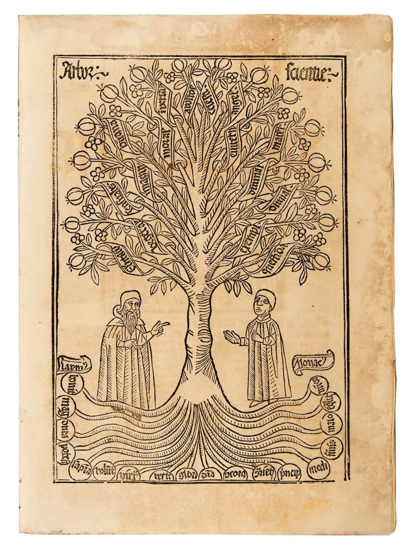Arbor scientie Raymundi