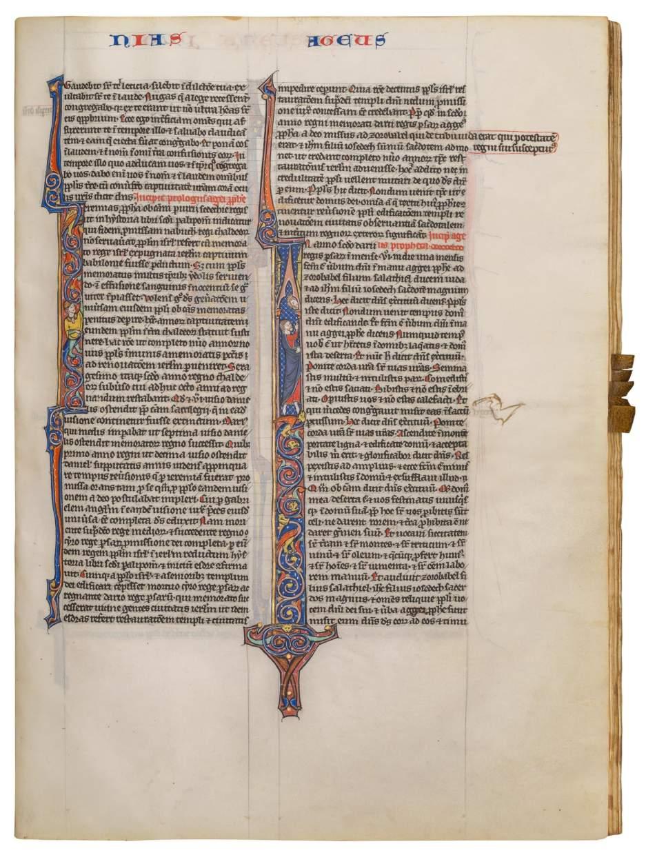 Astonishing, 'Regal', Parisian Bible