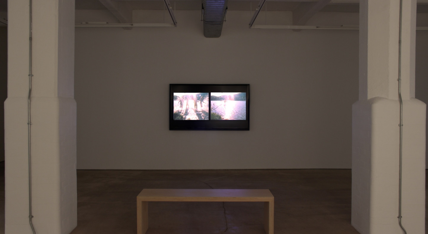 Carolee Schneemann, Water Light/Water Needle, Hales Gallery installation 2014
