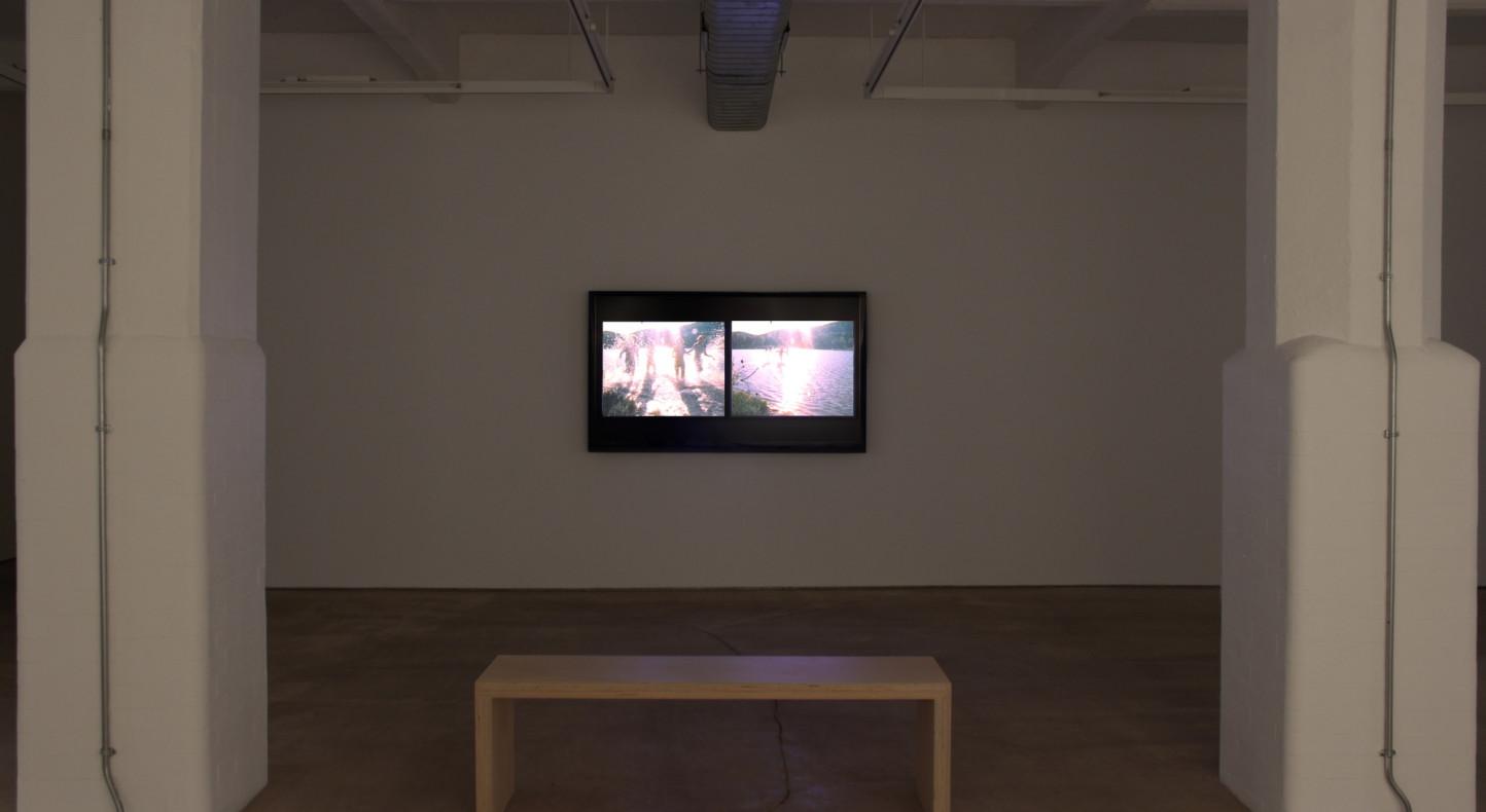 Carolee Schneemann, Water Light/Water Needle, Hales Gallery installation 2014