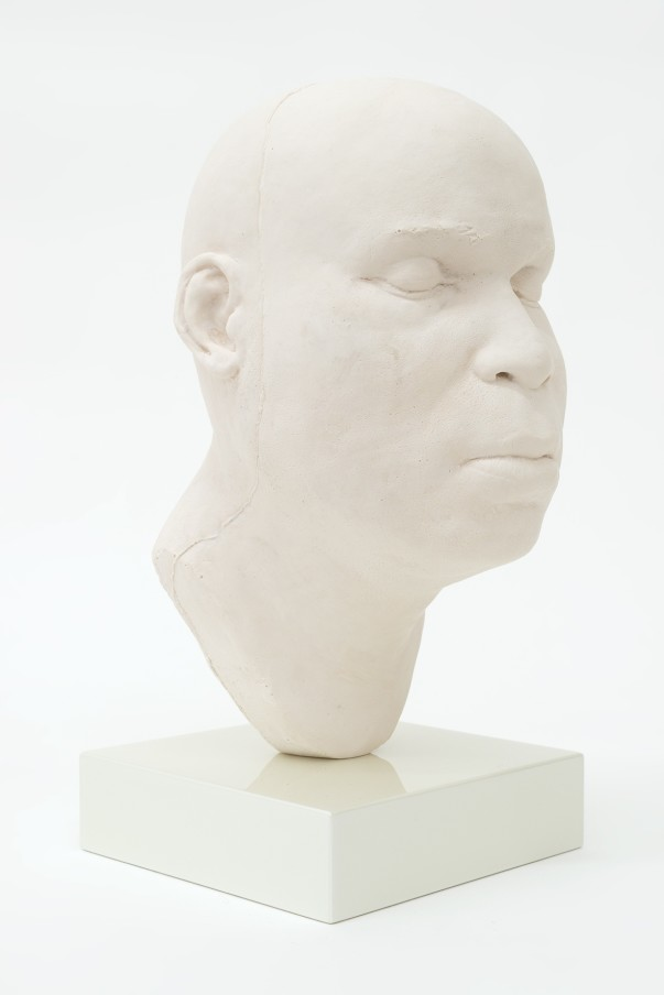 THOMAS J PRICE, Head 18, 2017, acrylic composite, perspex and automotive spray paint, 22.8 x 11 x 13 cm, 9 x 4 3/8 x 5 1/8 in, Edition of 5 plus 1 artist's proof (side view)