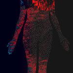 Lynn Hershman Leeson, Redhalothermogram, 2020