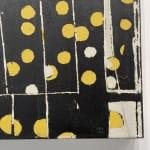Liz Douglas abstract artwork