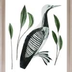 Beatrice Forshall, Zebra (Framed)