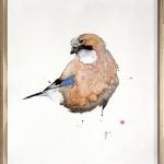 Karl Martens, Flying Barn Owl
