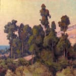 Coastal Grove- Eucalyptus