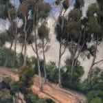 Skinny Trees (Eucalyptus)