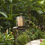 Gerard_Byrne_Lobster_Claw_contemporary_impressionism_Heliconia_Walk_Singapore_Botanic_Gardens