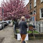 Gerard_Byrne_irish_artist_painting_plein_air_Portobello_Blossoms_Grantham_Street_Dublin_modern_impressionism