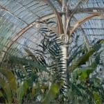 Gerard_Byrne_Cocoon_in_the_City_contemporary_impressionism_fine_art_gallery_Dublin_Ireland