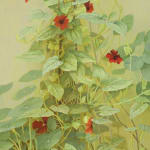 Jane Wormell, Blackberry Hedge II