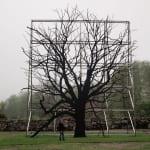Roxy Paine, Untitled (Vascular Man), 2012