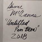 Shane McAdams, Pen Blow 94, 2014