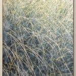 Patrick Lajoie, Grasses