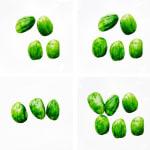 A Straightforward Guide to Bean Counting, Parkia speciosa (Petai)