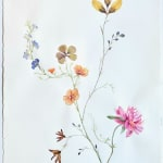 Marilla Palmer, Painted petals and Tiny Silk, 2020