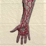 Juana Gomez, Hand Pattern, Santiago, Chile, 2019