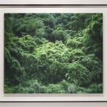 Yojiro Imasaka, Illuminating Earth 89, 2019