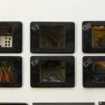 Carl Cheng, Anthropocene Landscape 2, 2006