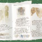 Emily Speed, Sketchbook Roma, 2001