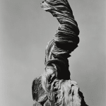 Edward Weston, Stump Against Sky, 1936