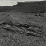 Paul Caponigro, Pebble Beach, California, 1969