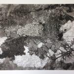 Ravi Agarwal - Landscape Series 1